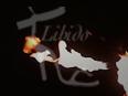 libido17eth-25